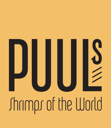 Puuls Shrimps