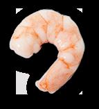 Crevettes bio (élevage)